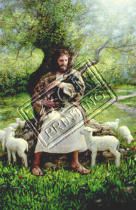 Jesus caring for the sheep
